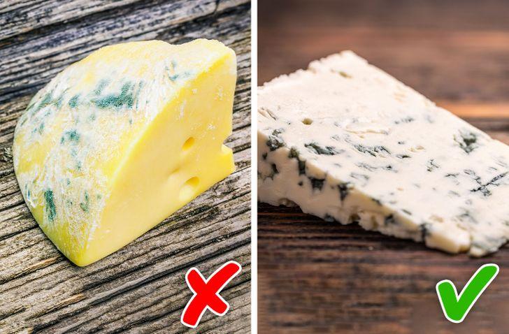 Có những loại thực phẩm có nấm mốc mà cơ thể chúng ta có thể tiêu hóa dễ dàng