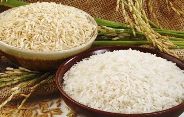 Đại lý gạo Tuấn Toán