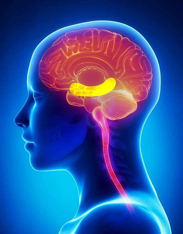 Giúp cải thiện trí nhớ