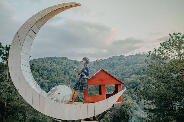 Nhà Gỗ Trên Cây