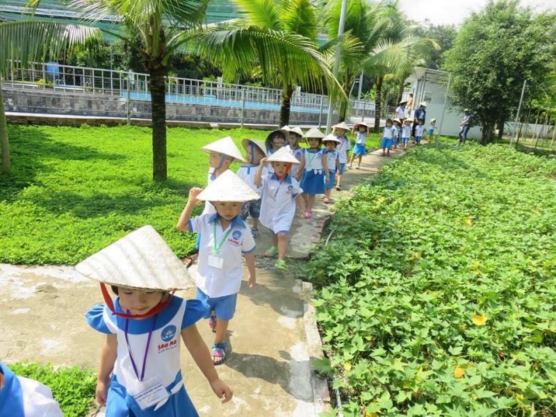 Trường mầm non tư thục Sao Mai