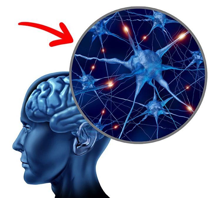 Bộ não của bạn sẽ được bảo vệ bởi choline