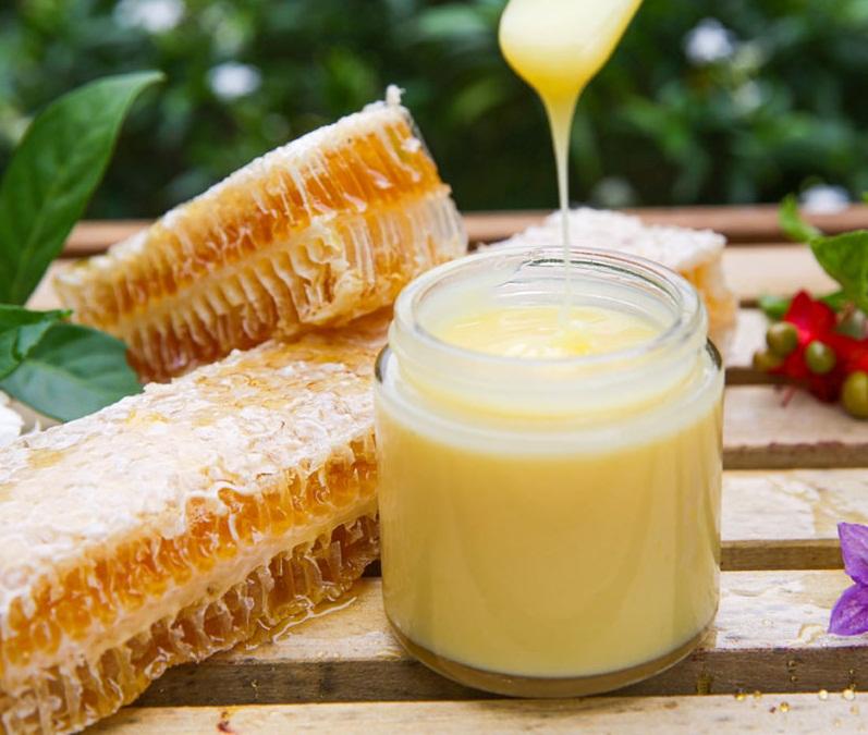 Phân biệt sữa ong chúa thật và giả bằng cách quan sát