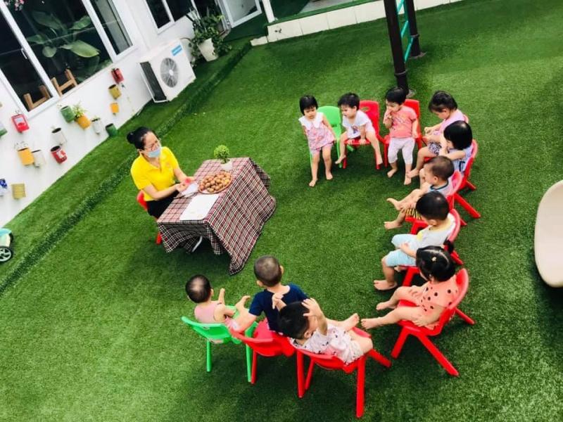 Trường Mầm Non Tiny Bear - Việt Trì