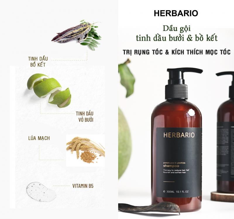 Bộ sản phẩm thuần chay chăm sóc & trị rụng tóc của Herbario