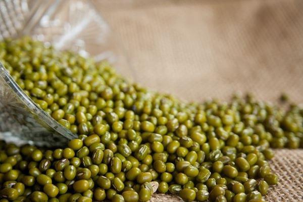 Cách chữa bệnh gút bằng đậu xanh
