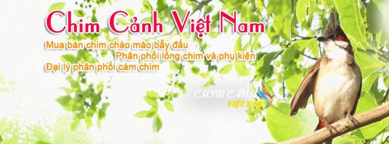 Chim Cảnh Việt Nam