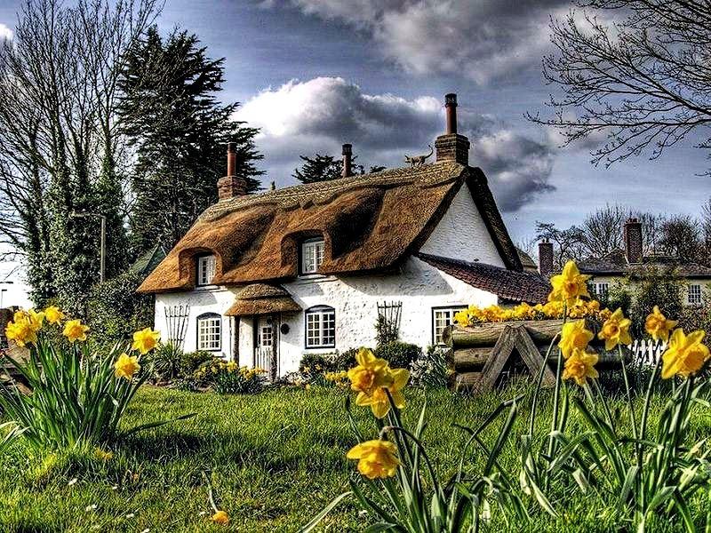 Devonshire - Anh