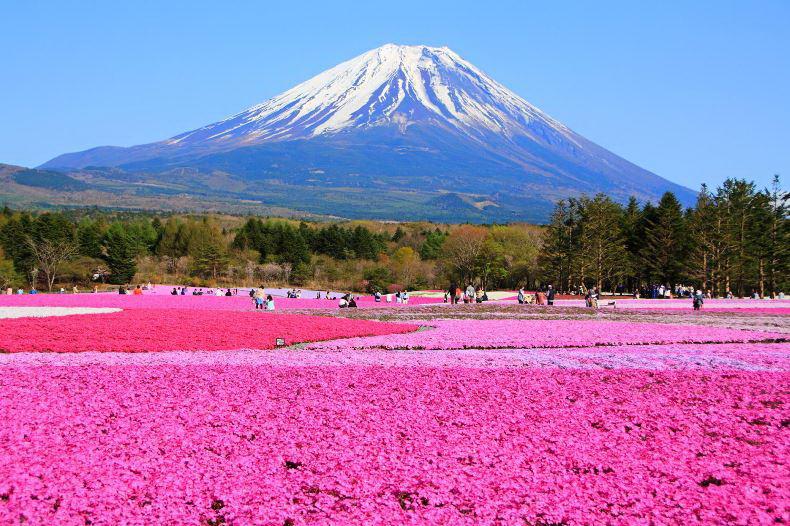 Hokkaido - Nhật Bản