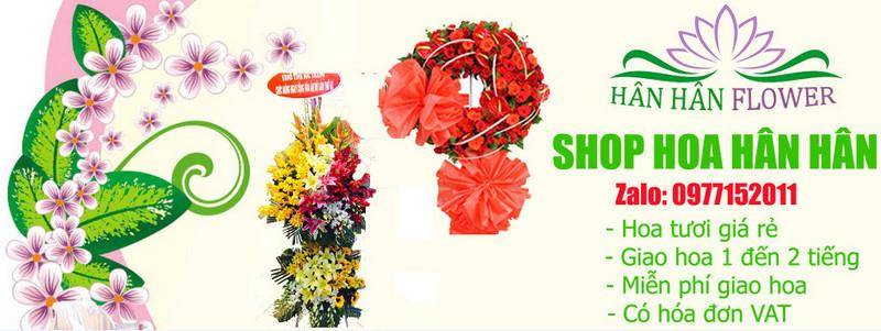 Shop hoa tươi Hân Hân