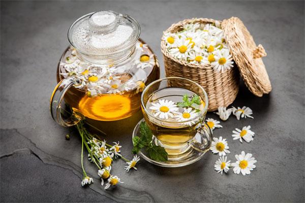 Trà hoa cúc cam thảo