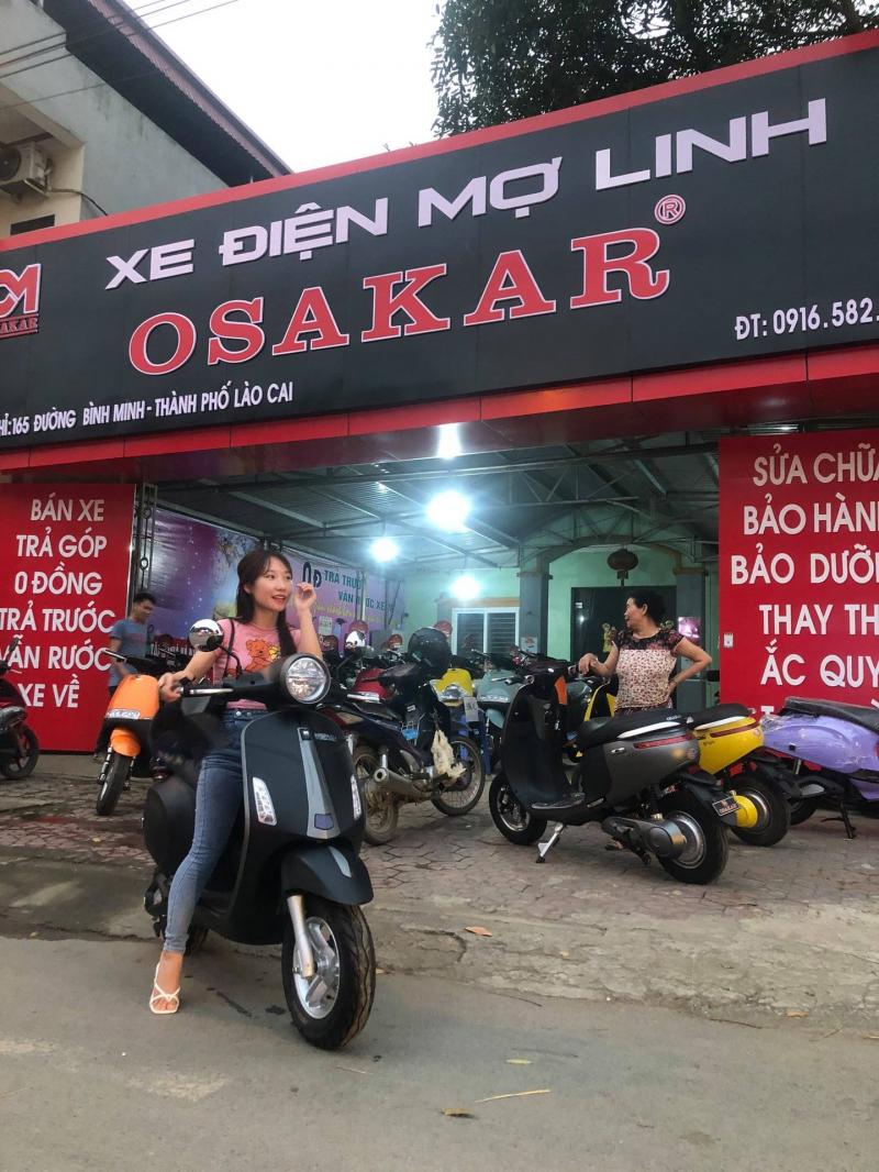 Xe điện Mợ Linh
