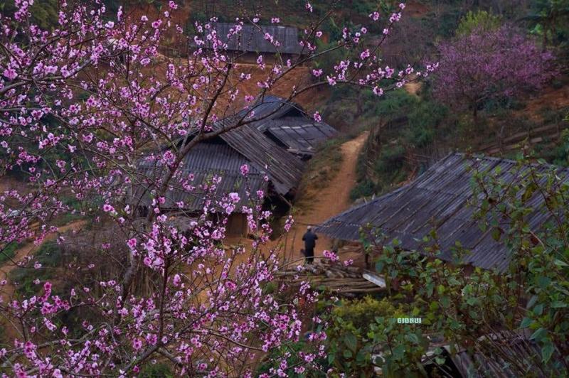 Bài văn tả cảnh một buổi sáng mùa xuân số 3