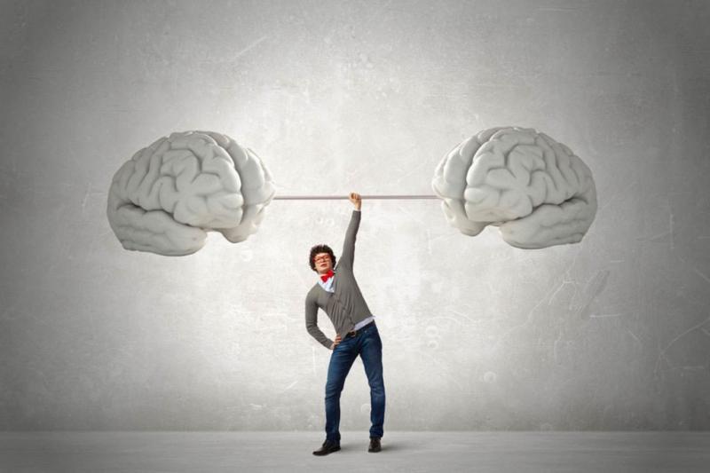 Cải thiện hoạt động của não bộ, tăng cường trí nhớ
