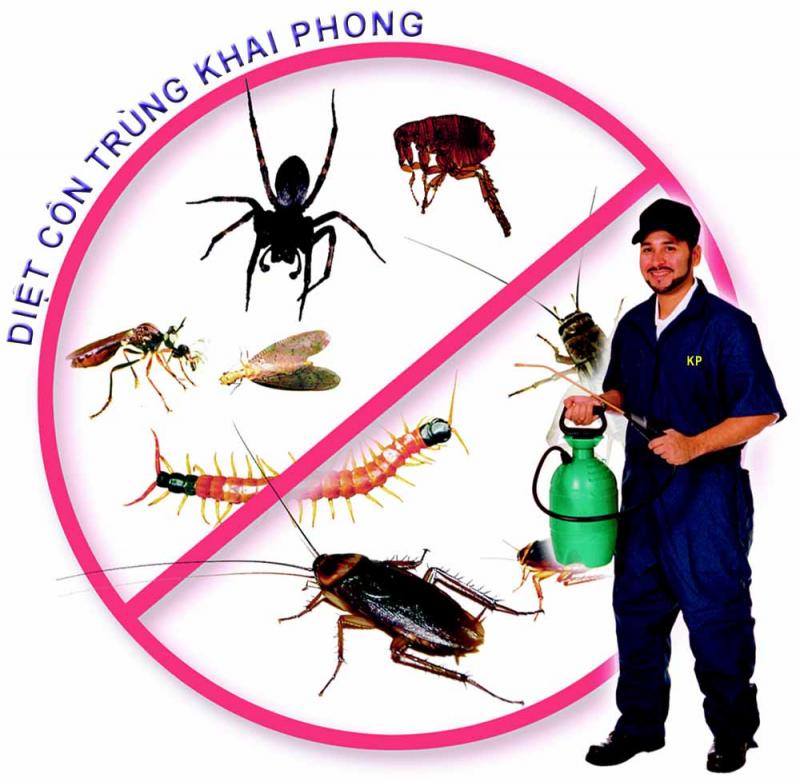 Công ty diệt mối, côn trùng Khai Phong