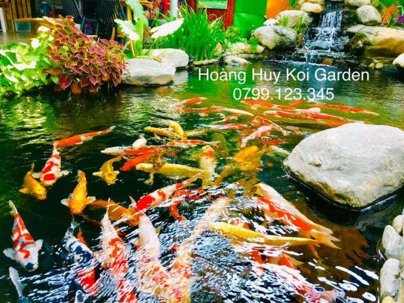 Hoàng Huy Koi Garden