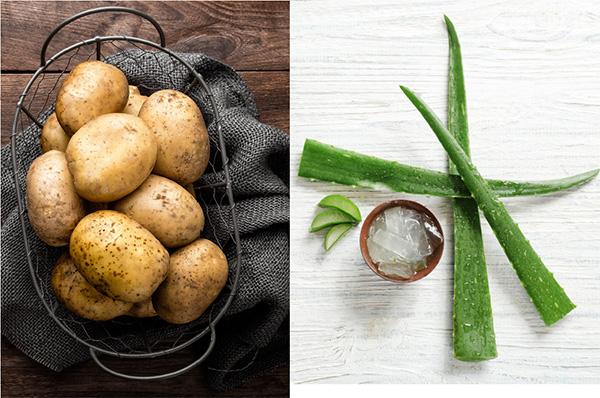 Nha đam khoai tây