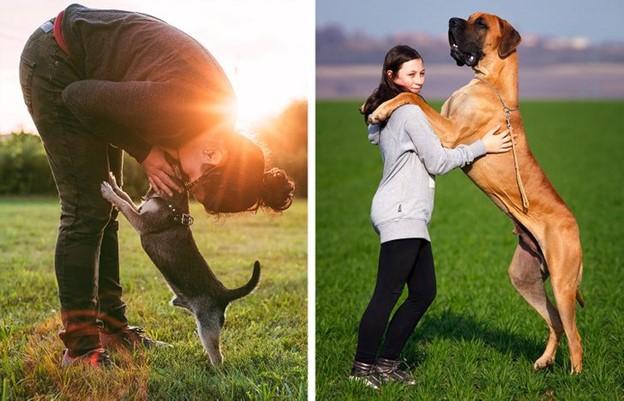 Chúng ta để những con chó của chúng tôi đặt chân lên người chính mình