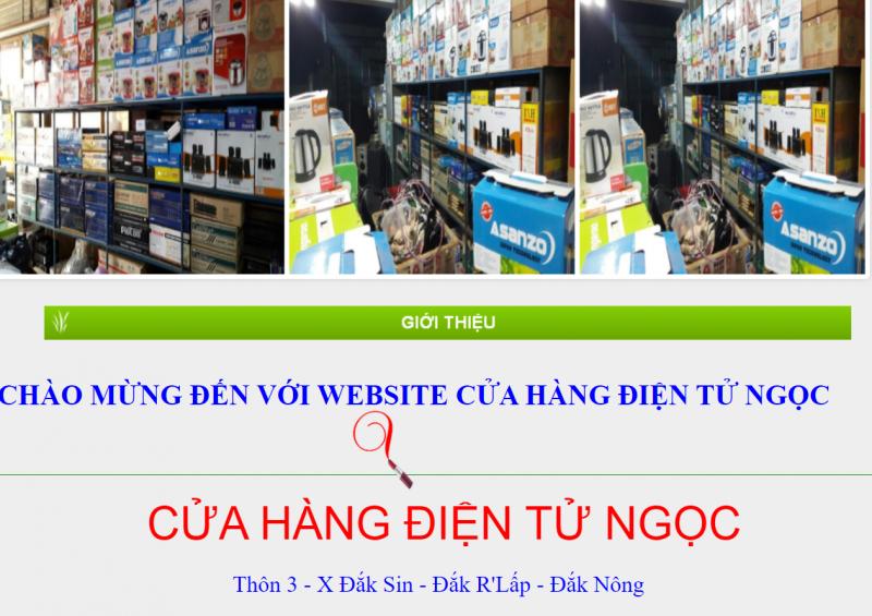 Cửa hàng điện tử Ngọc
