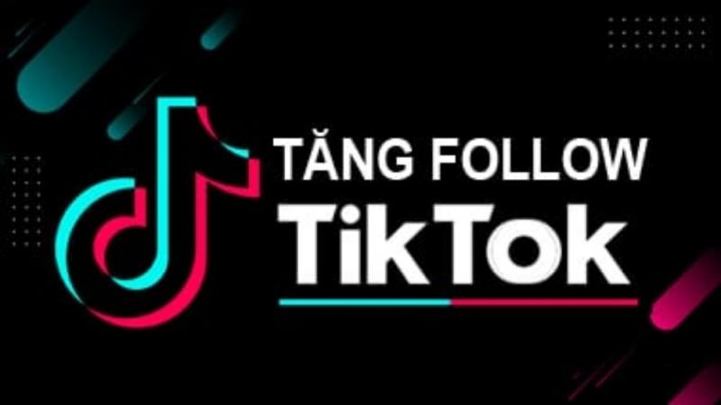 Dịch vụ tăng follow TikTok của AVATO