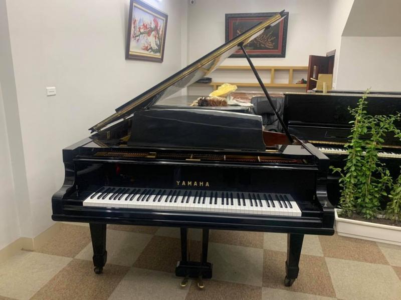 Piano Hoàng Phát